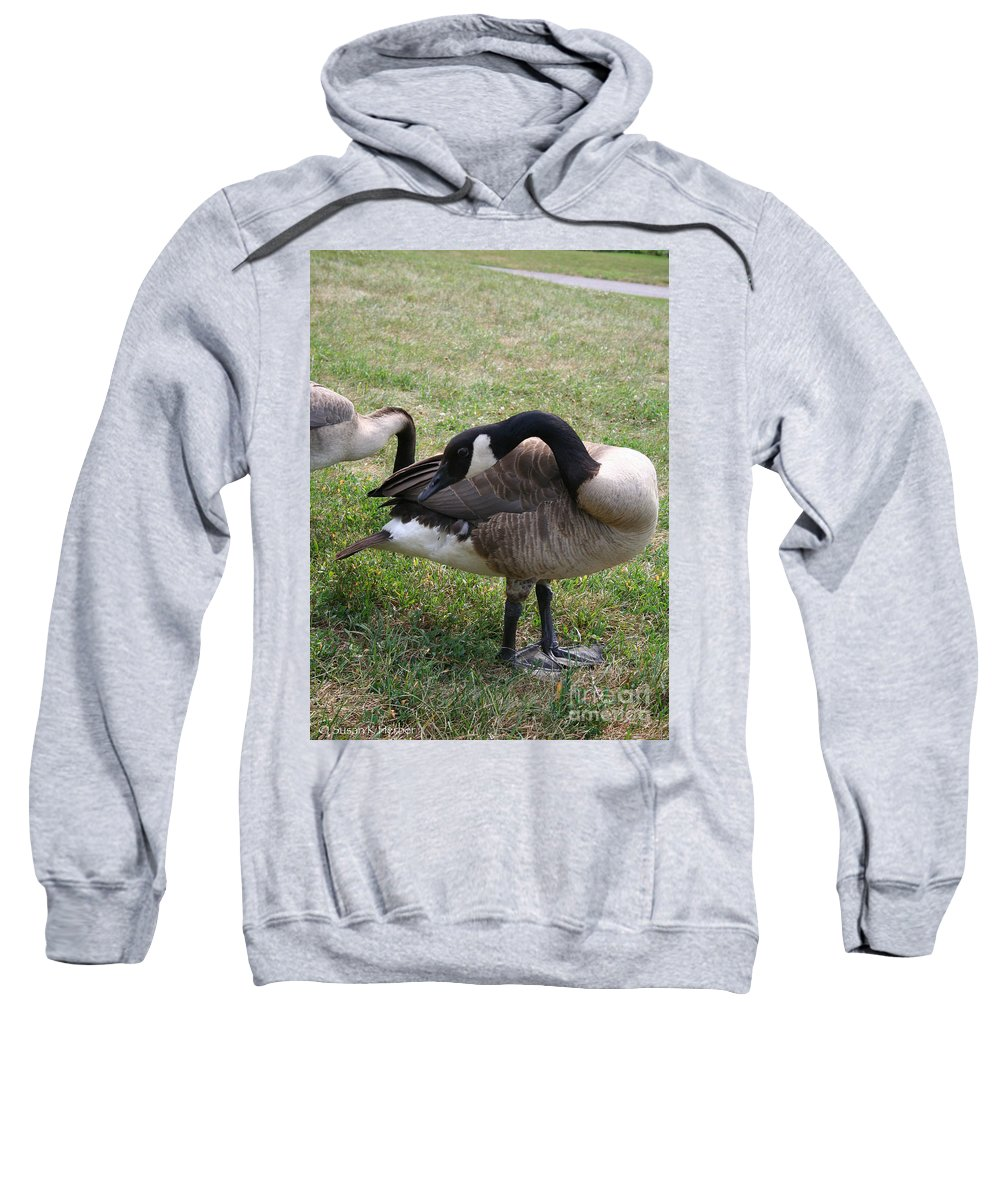 Outdoors Sweatshirt featuring the photograph Preen by Susan Herber