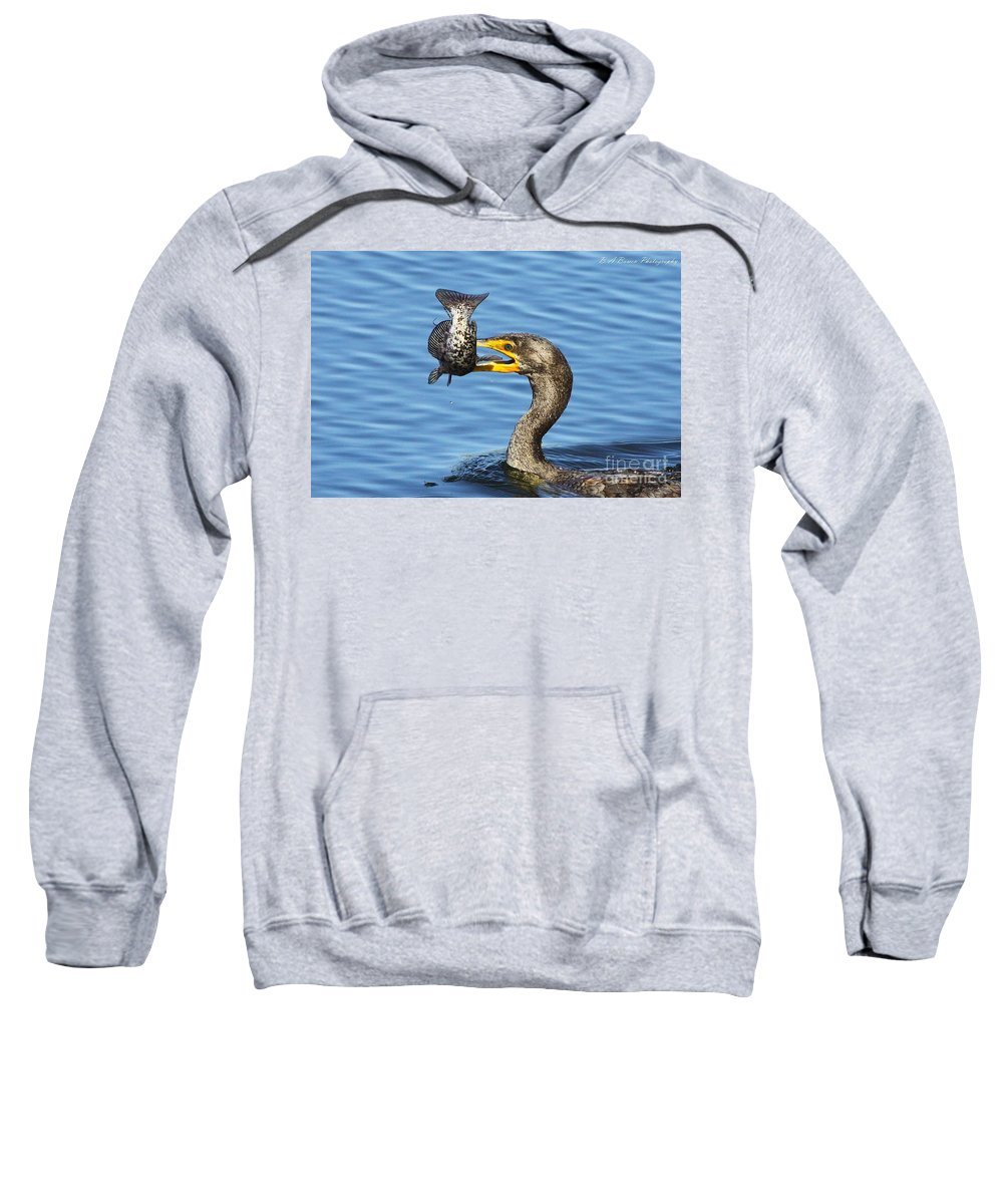 Double Crested Cormorant Sweatshirt featuring the photograph Prized Catch by Barbara Bowen