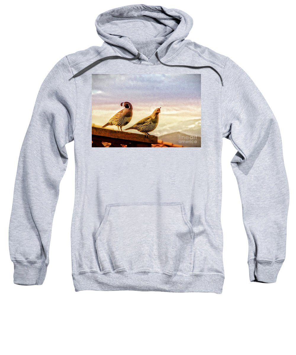 Quail Sweatshirt featuring the photograph Quail And His Lady by Phyllis Kaltenbach