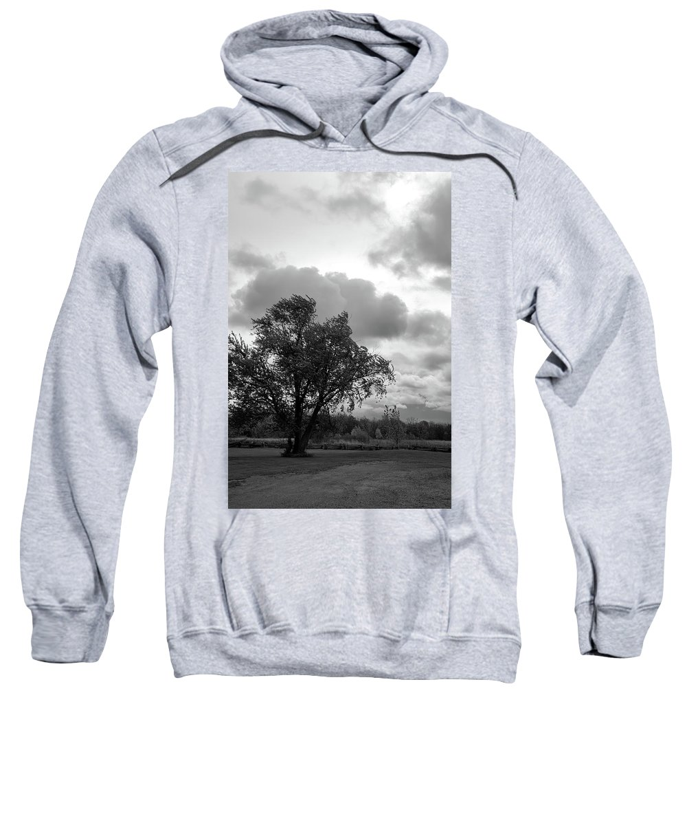Tree Sweatshirt featuring the photograph R I P by Guy Whiteley