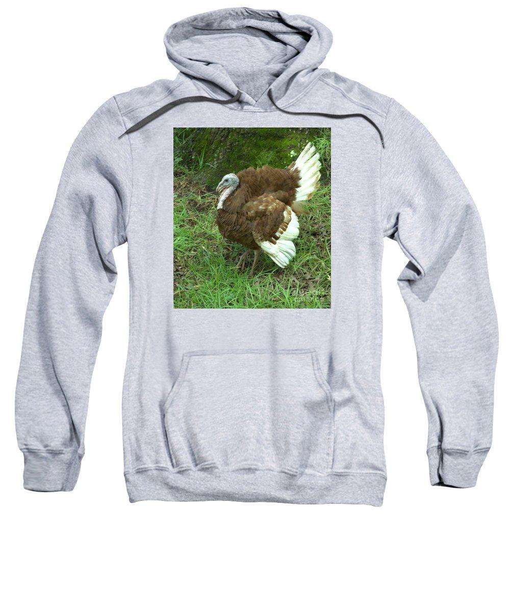Bird Sweatshirt featuring the photograph Red Burbon Turkey by Donna Brown