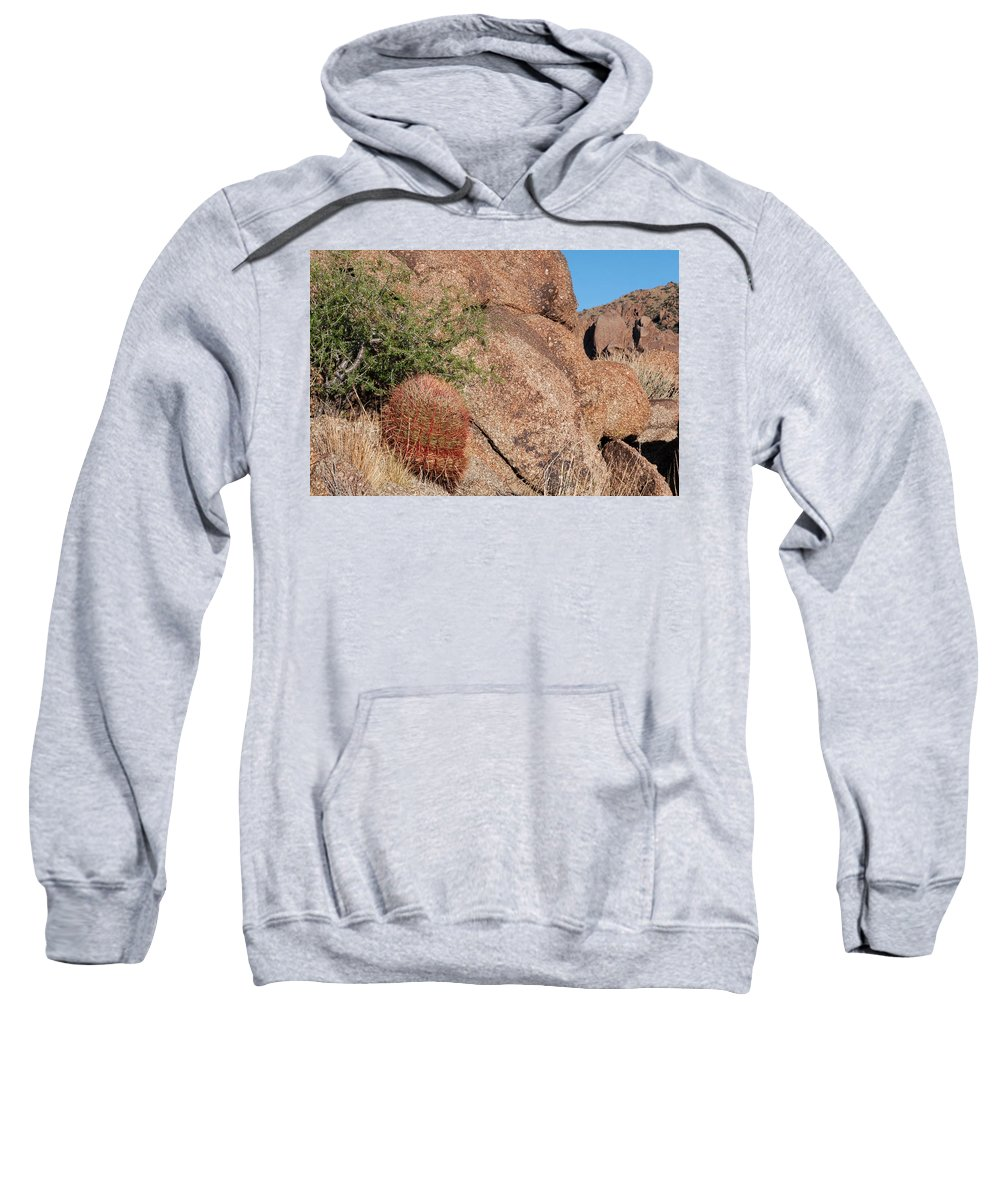 Gold Butte Region Sweatshirt featuring the photograph Red Cactus Rock by Lorraine Devon Wilke