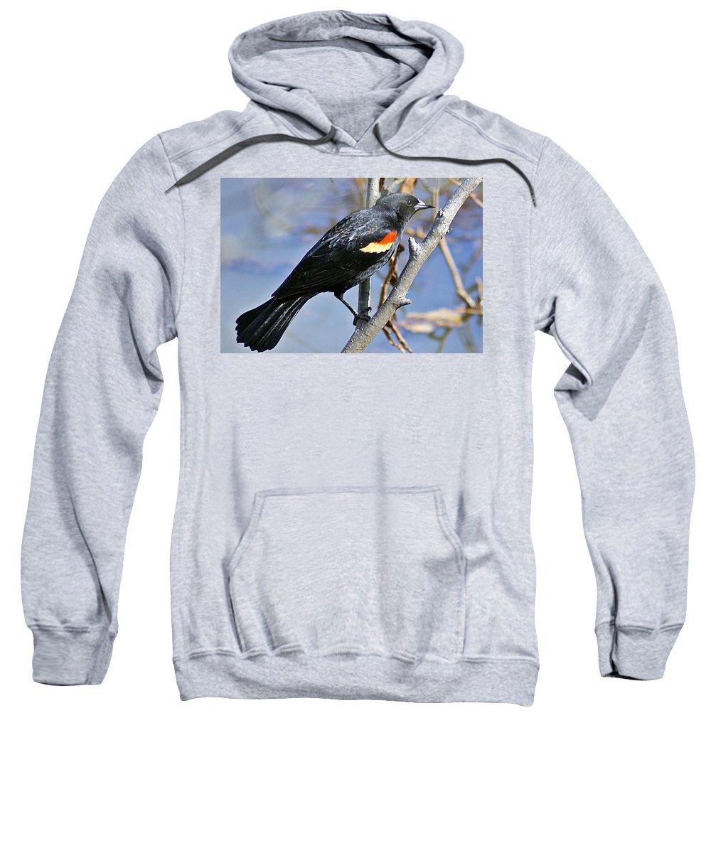 Redwinged Sweatshirt featuring the photograph Redwinged Blackbird I by Joe Faherty