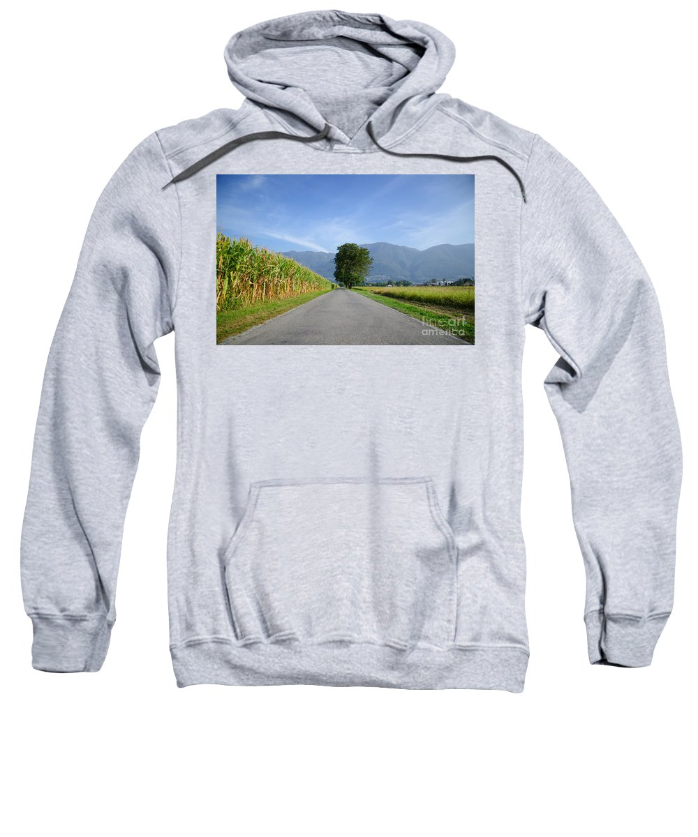 Road Sweatshirt featuring the photograph Road And Trees by Mats Silvan