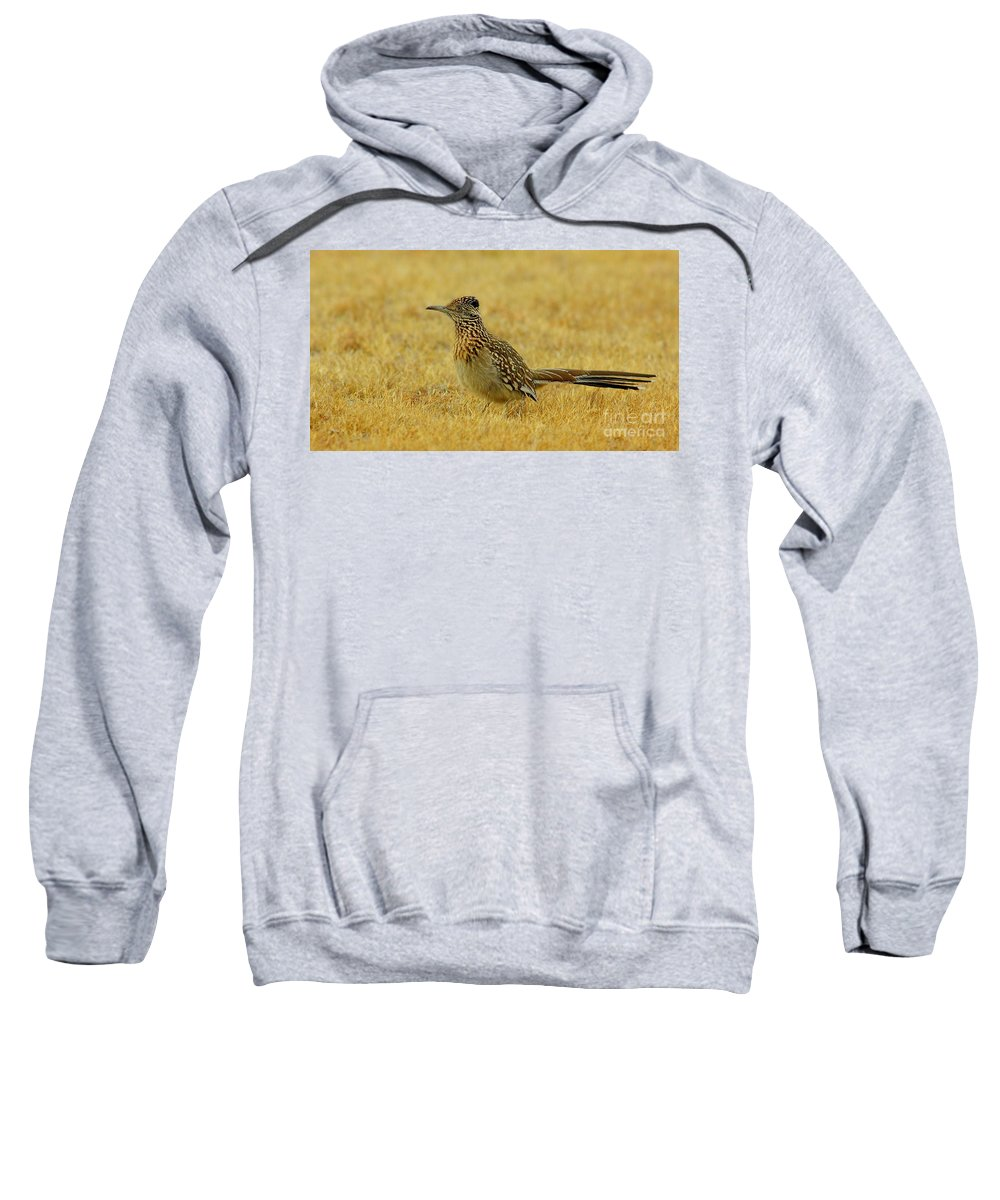 Animal Sweatshirt featuring the photograph Roadrunner Hen by Robert Frederick