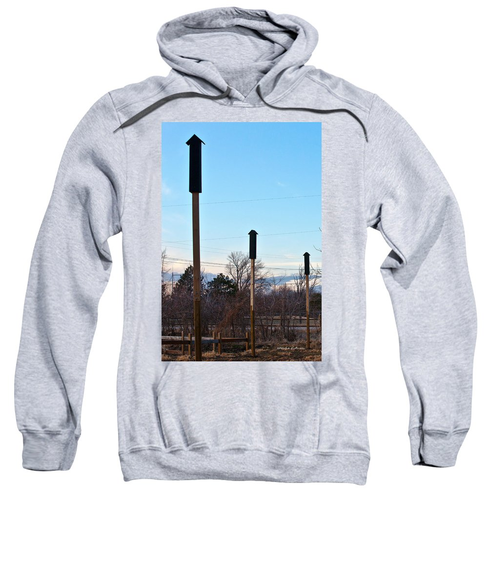 Heron Haven Sweatshirt featuring the photograph Rockets Arrows Or Bat Houses by Edward Peterson