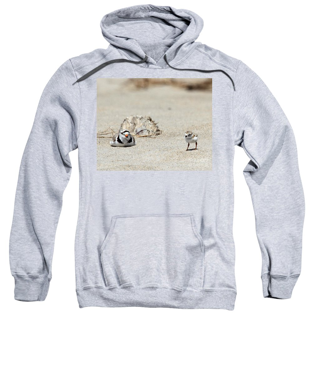 Plover Sweatshirt featuring the photograph Run Little One Piping Plover by Lloyd Alexander