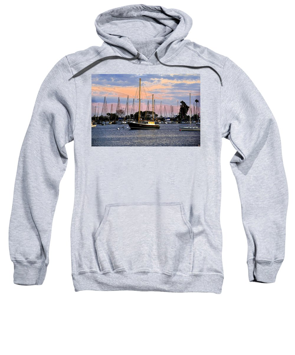 Art Sweatshirt featuring the painting Safe Basin by David Lee Thompson