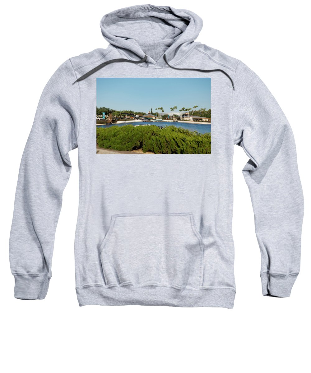 Digital Art Sweatshirt featuring the photograph Sea Gull Checking Me Out Digital Art by Thomas Woolworth