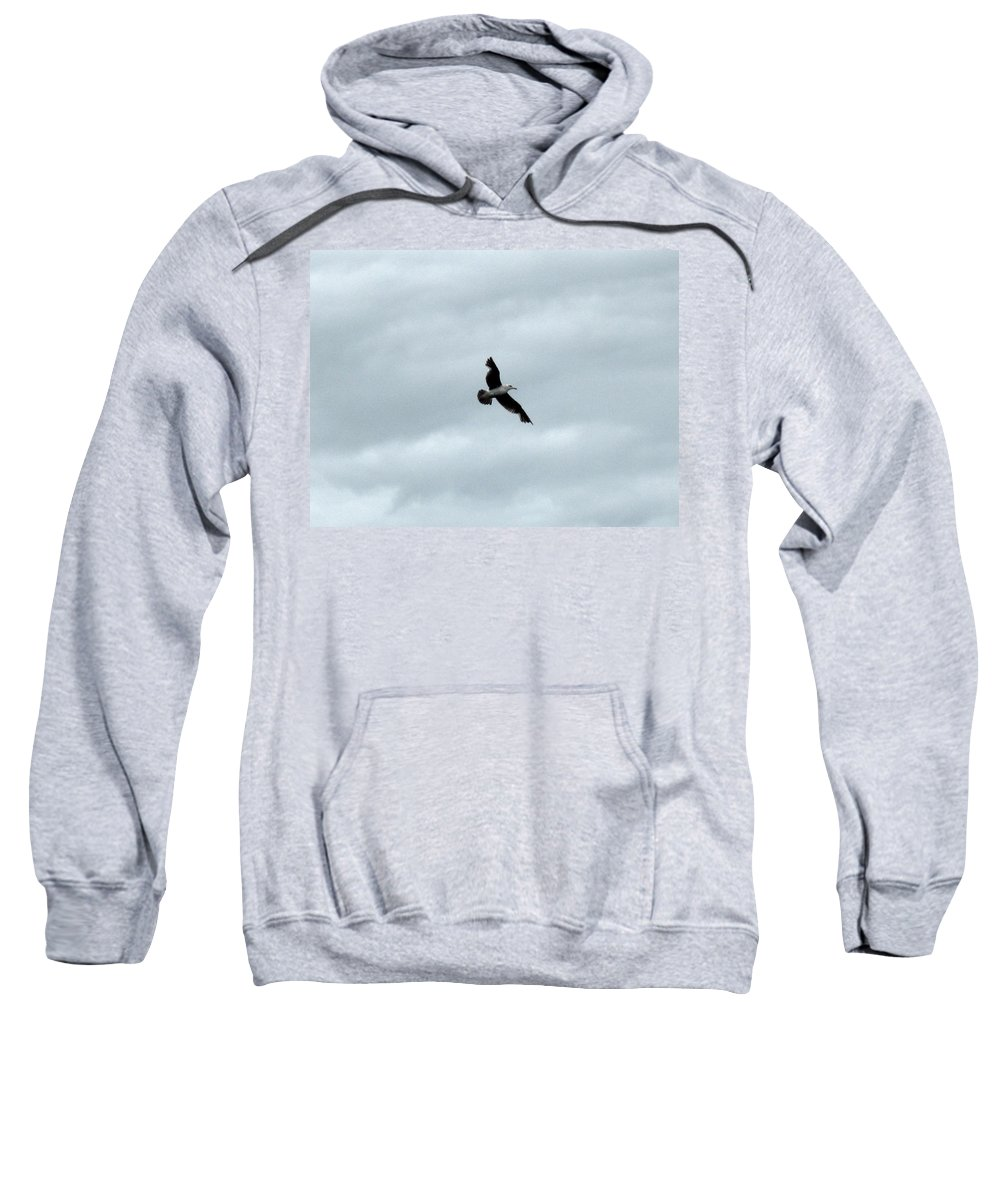 Seagull Sweatshirt featuring the photograph Seagull I by Linda Hutchins