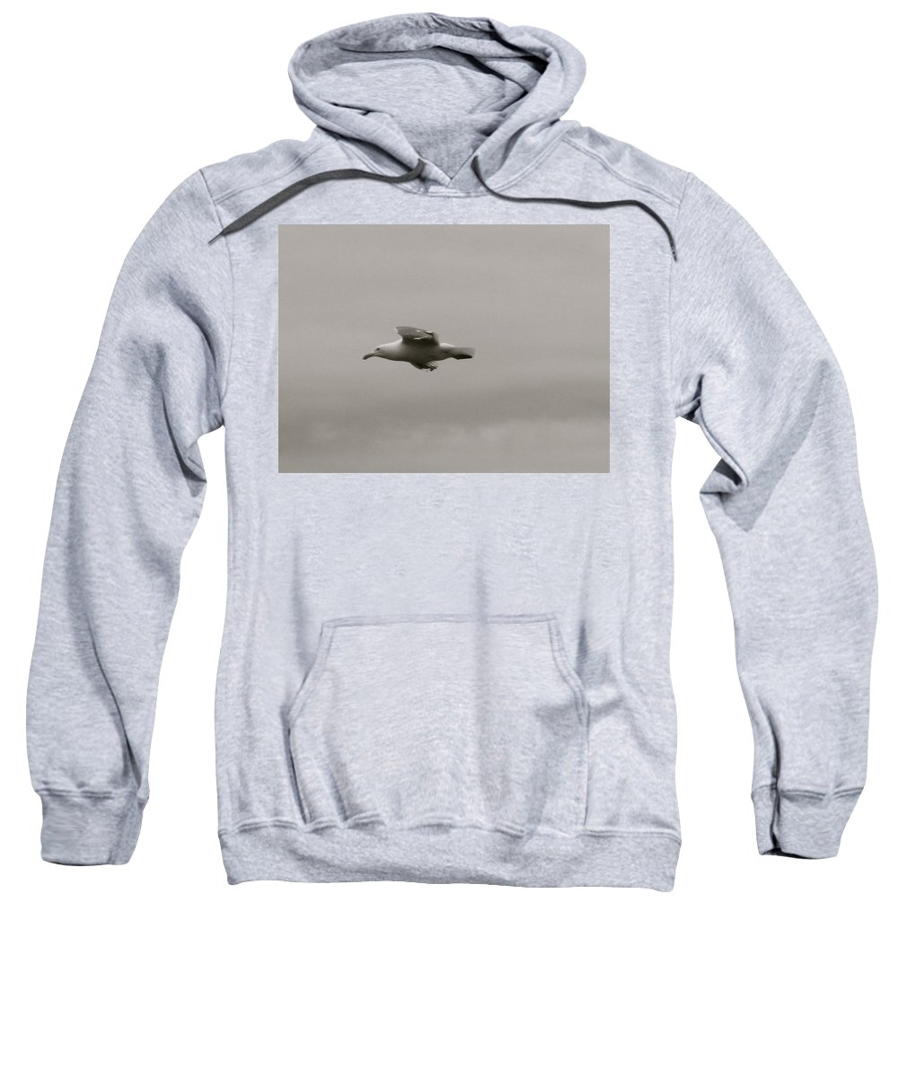 Seagull Sweatshirt featuring the photograph Seagull In Flight by Linda Hutchins