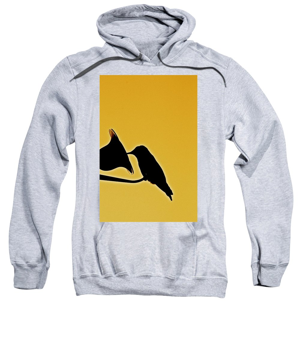 Birds Sweatshirt featuring the photograph Sepia Silhouette by Diana Hatcher