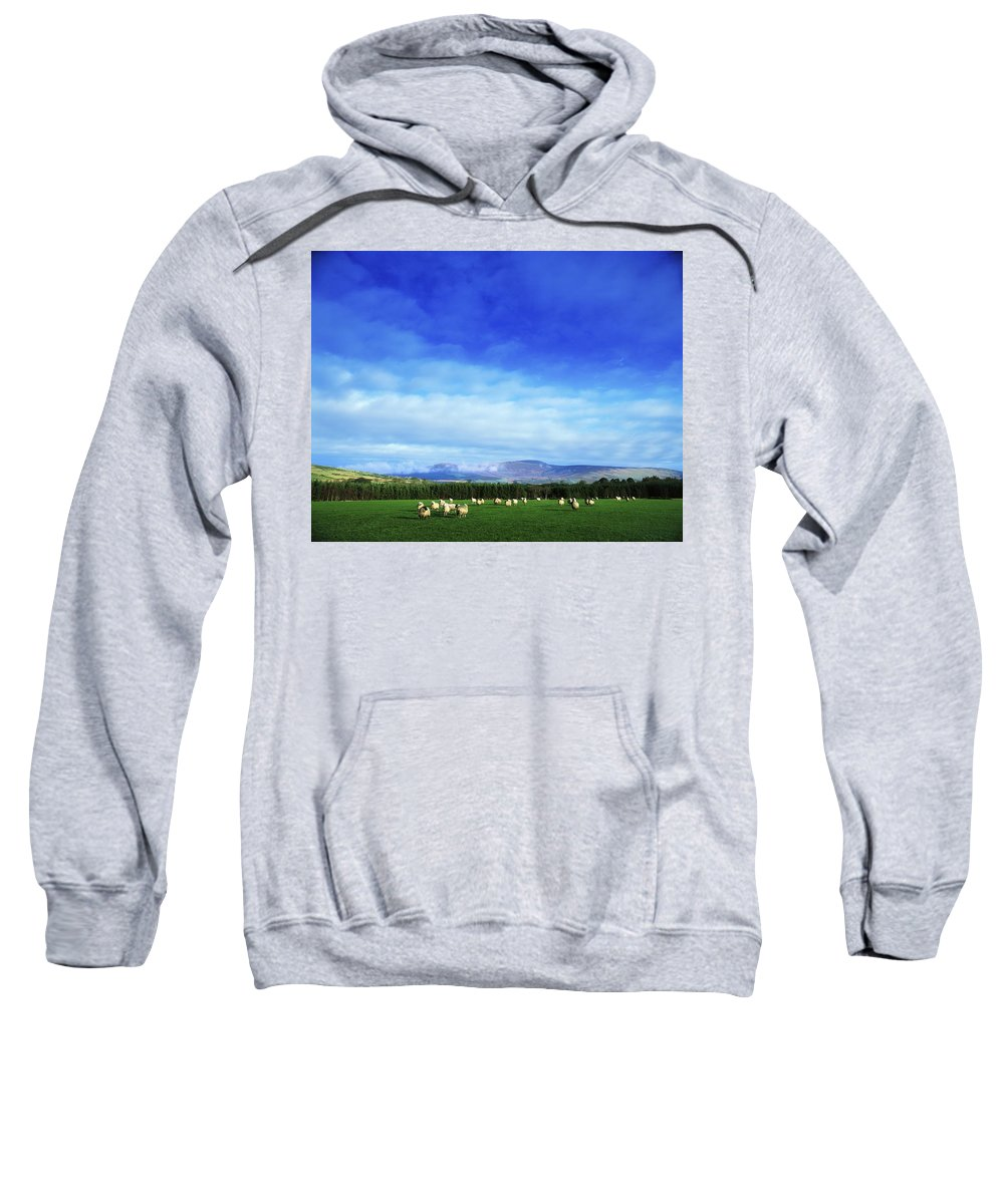 Animal Sweatshirt featuring the photograph Sheep Grazing In Field County Wicklow by The Irish Image Collection