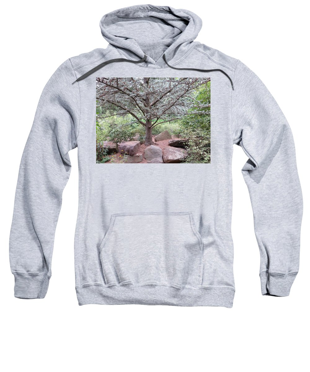Thought Tree Sweatshirt featuring the photograph Silver On Trunk by Sonali Gangane