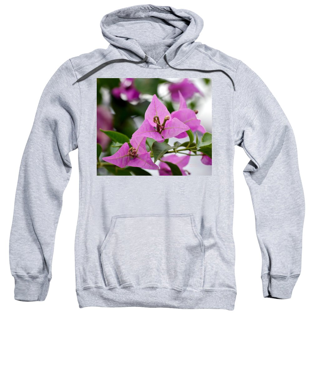 Simplicity Sweatshirt featuring the photograph Simplicity by Maria Urso