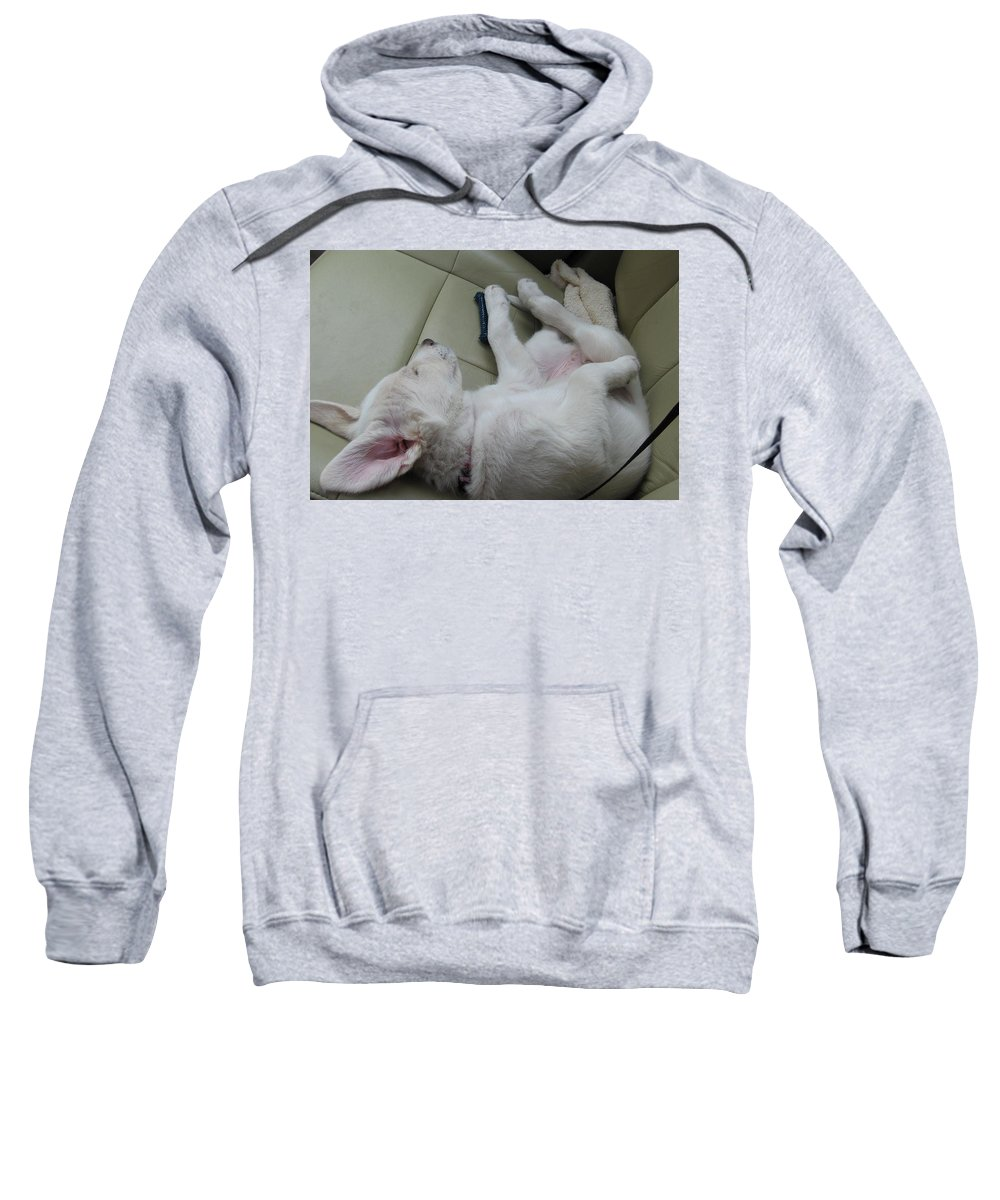 Labrador Sweatshirt featuring the photograph Sleeping In The Front Seat by Amy Hosp