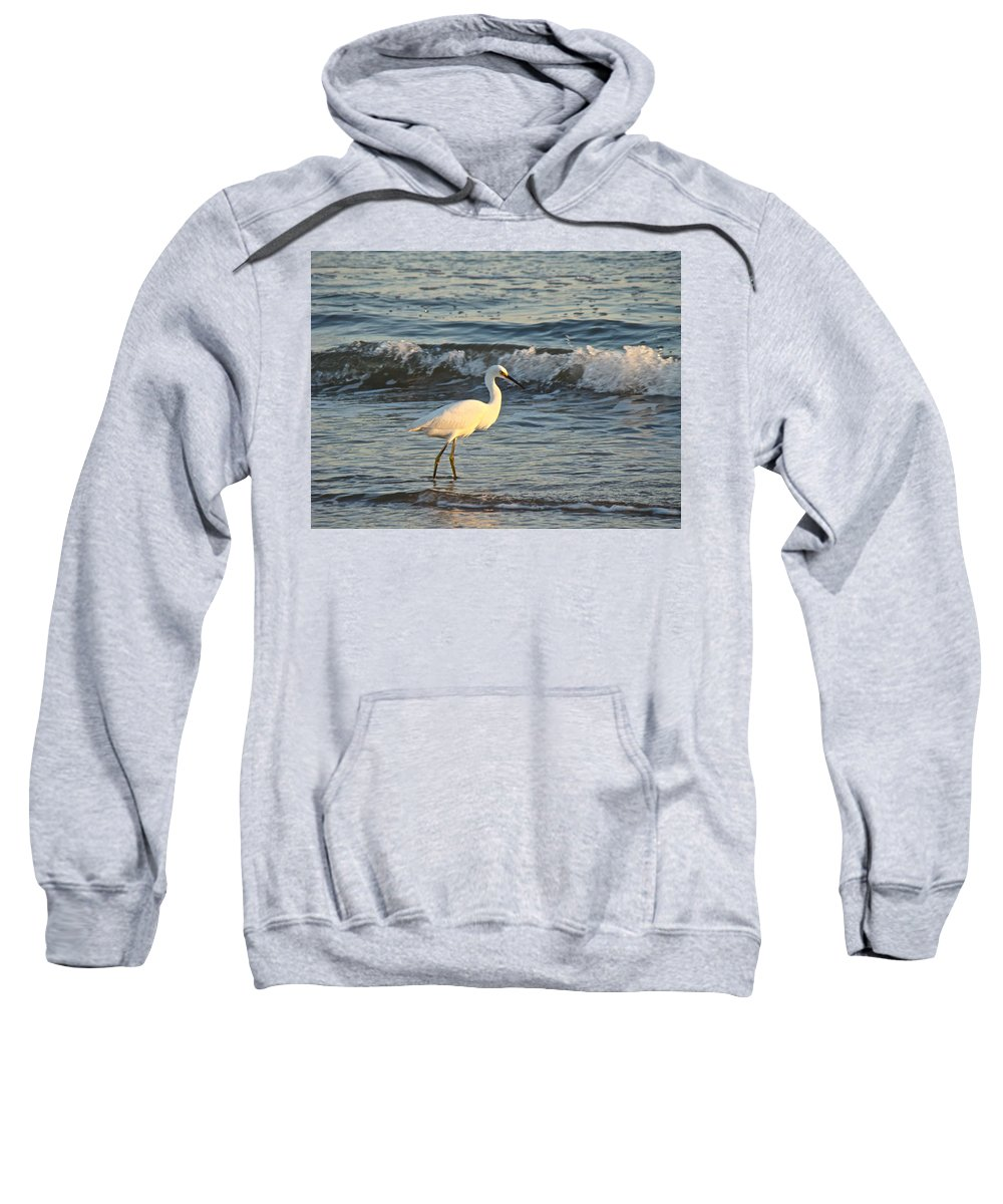 Snowy Egret Sweatshirt featuring the photograph Snowy Egret - Egretta Thula by Mother Nature