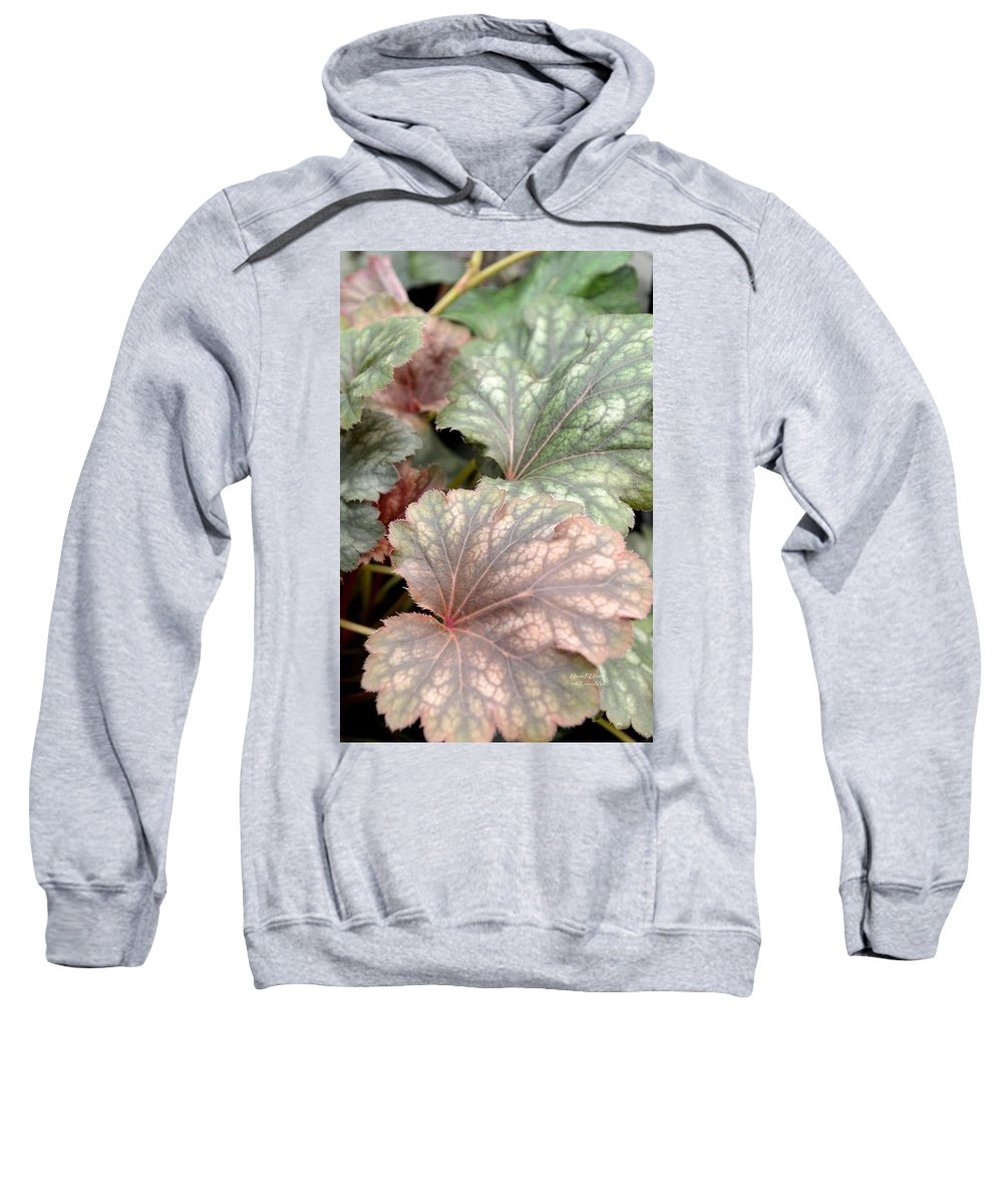 Soft Sweatshirt featuring the photograph Soft Curves by Maria Urso