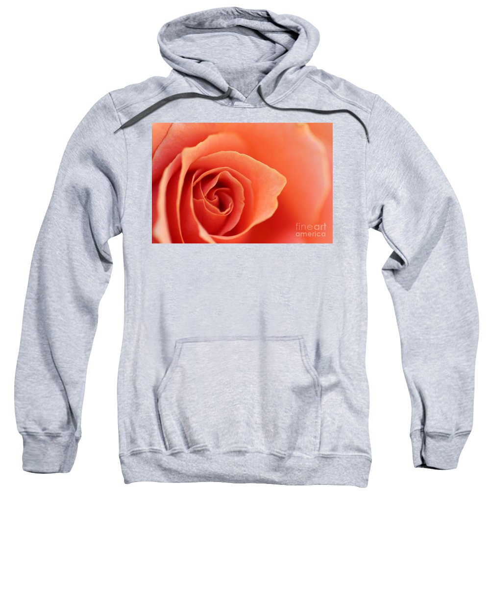 Rose Sweatshirt featuring the photograph Soft Rose Petals by Henrik Lehnerer