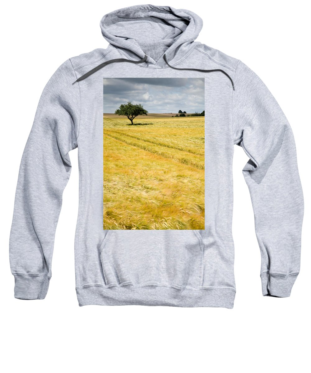 Borg Sweatshirt featuring the photograph Solitary Tree by Ian Middleton