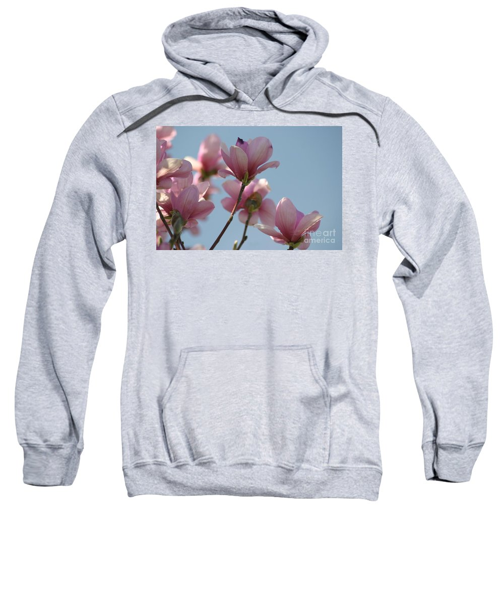 Floral Sweatshirt featuring the photograph Spring Has Sprung by Living Color Photography Lorraine Lynch