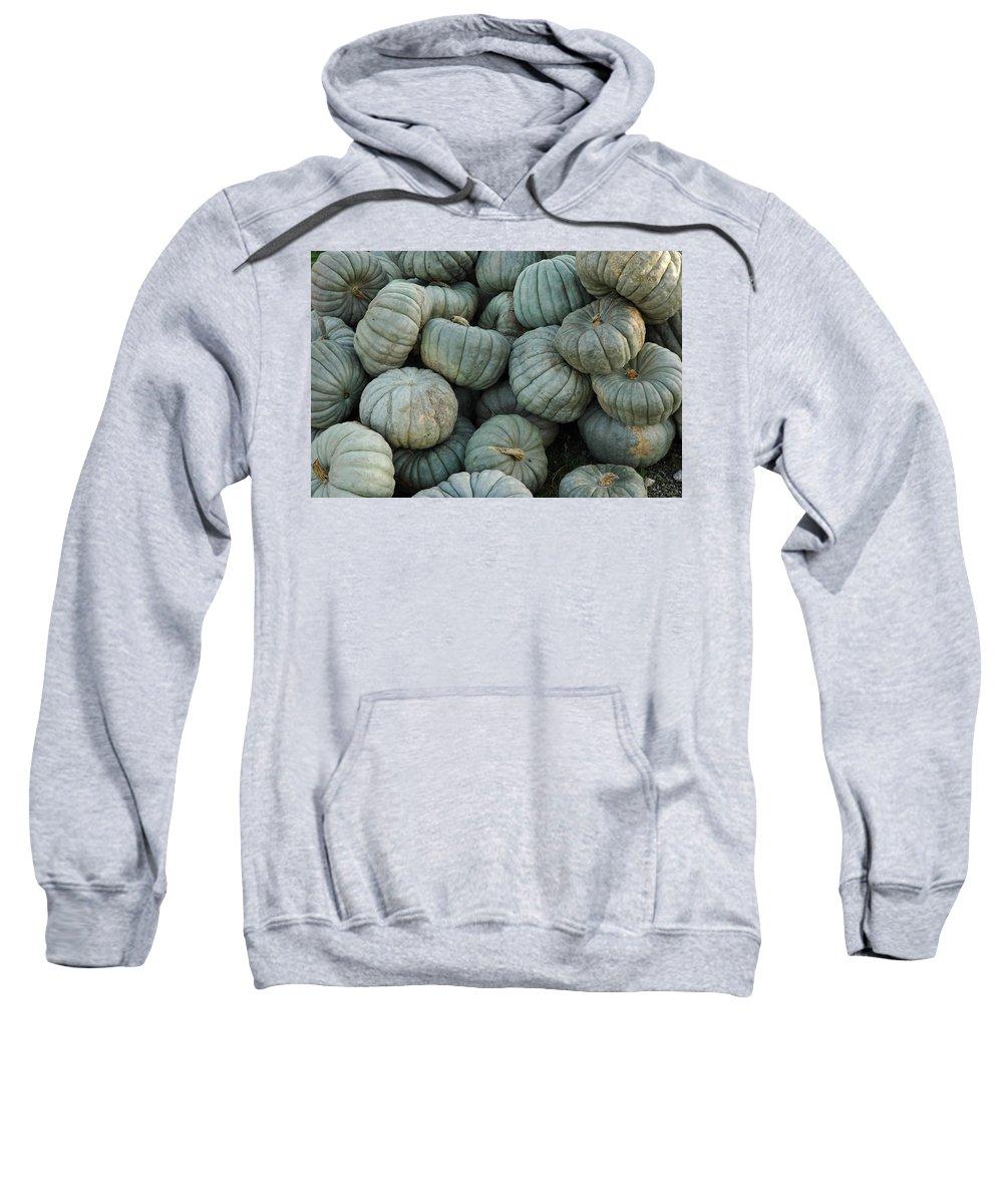 Usa Sweatshirt featuring the photograph Squash Pile by LeeAnn McLaneGoetz McLaneGoetzStudioLLCcom