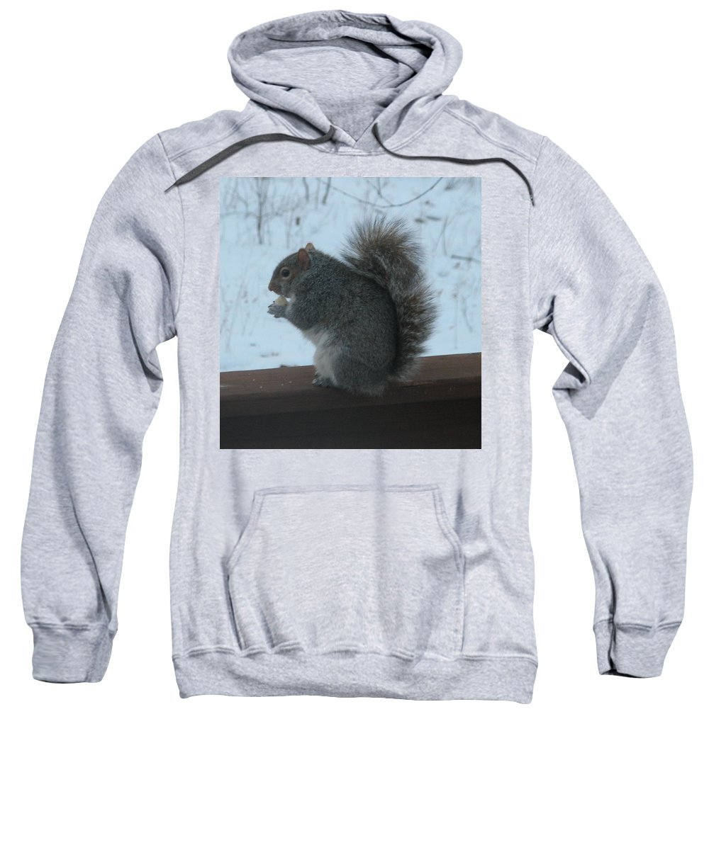 Squirrel Sweatshirt featuring the photograph Squirrel Snack by Richard Bryce and Family