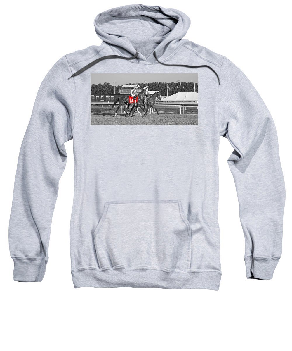 Horse Sweatshirt featuring the photograph Standing Out by Betsy Knapp