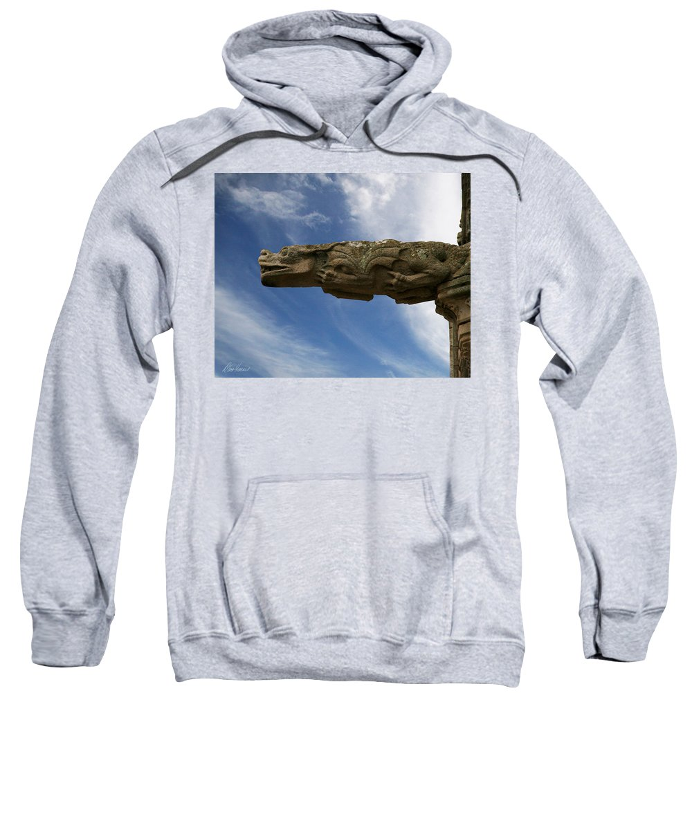 Stone Sweatshirt featuring the photograph Stone Dragon by Diana Haronis
