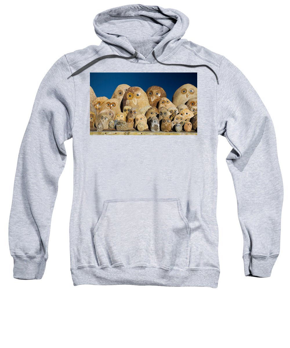 Owls Sweatshirt featuring the photograph Stone Owls by Diana Haronis