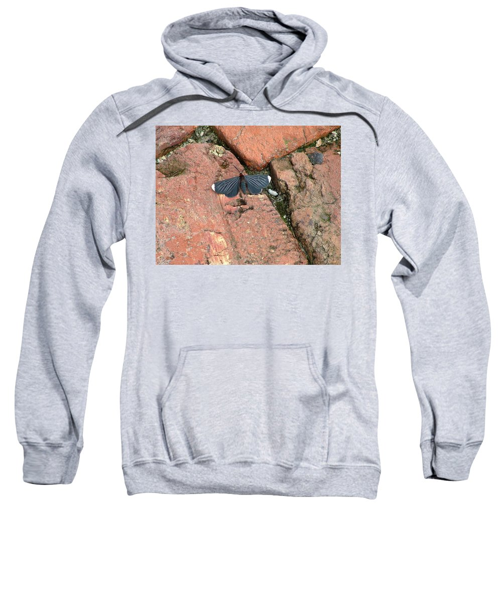 Nature Sweatshirt featuring the photograph Stop In Time by Dennis Pintoski