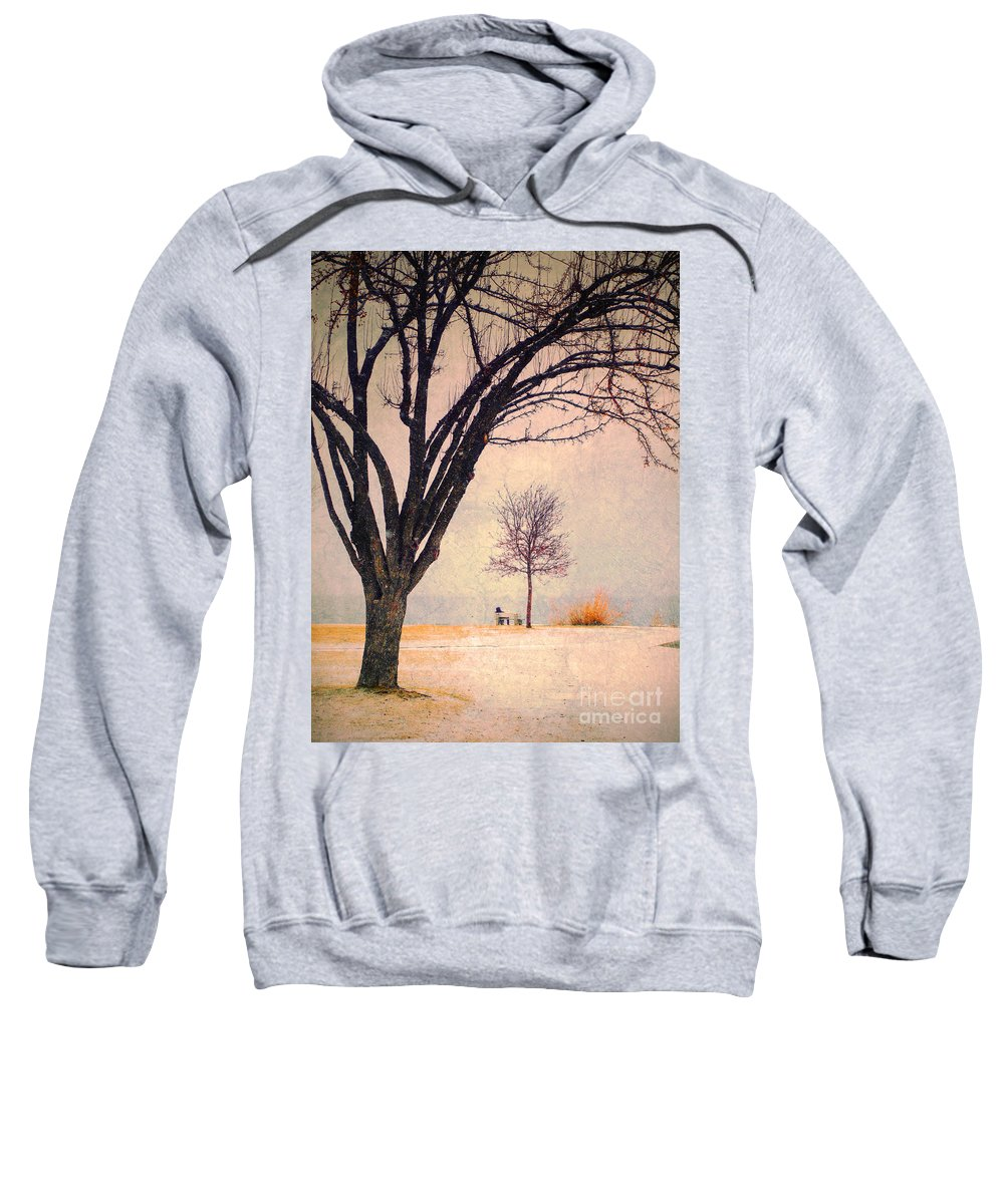 Storm Sweatshirt featuring the photograph Storm Passing by Tara Turner