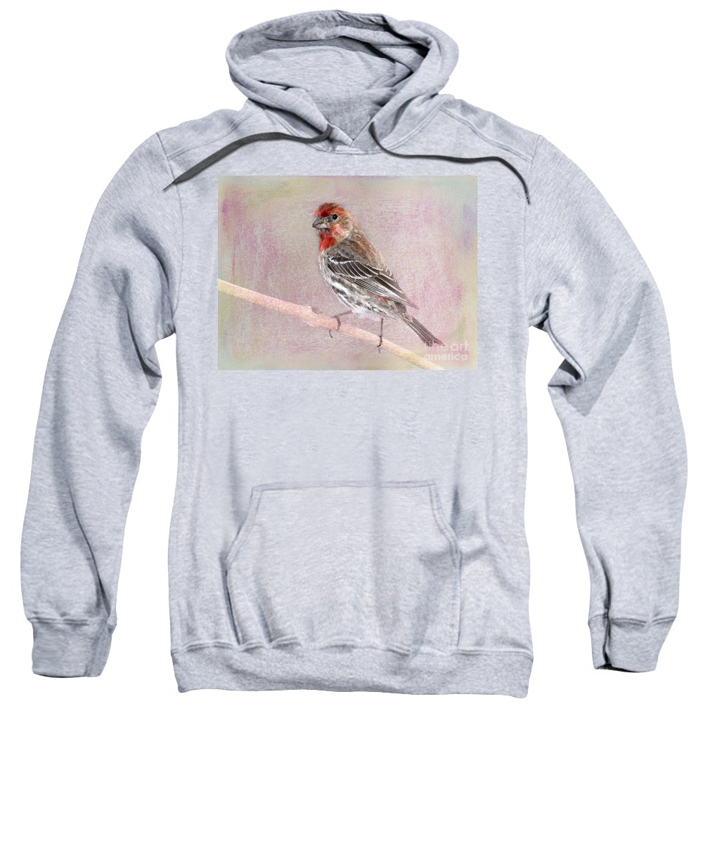 House Finch Sweatshirt featuring the photograph Sublime by Betty LaRue