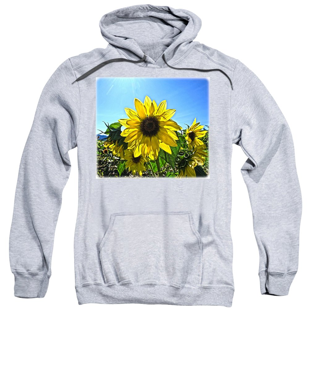 Sunflower Sweatshirt featuring the photograph Sun Flower by Steve McKinzie