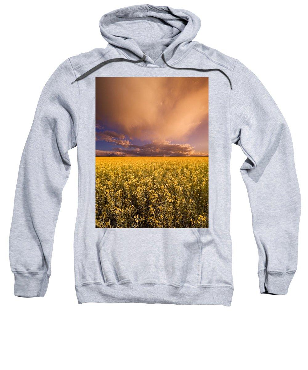 Alberta Sweatshirt featuring the photograph Sunset On A Canola Field by Darren Greenwood