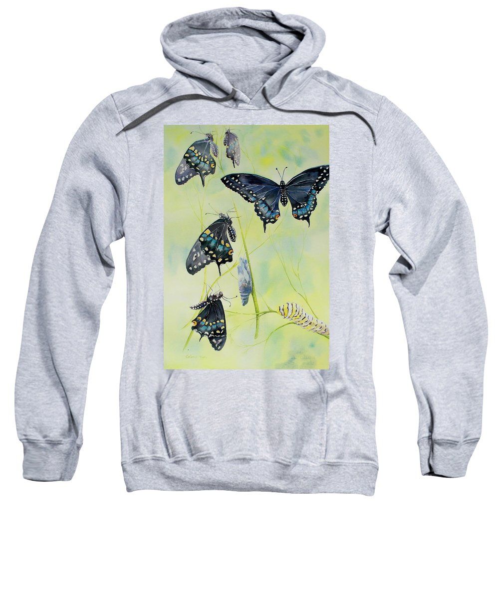 Butterfly Sweatshirt featuring the painting Swallowtail Story by Celene Terry