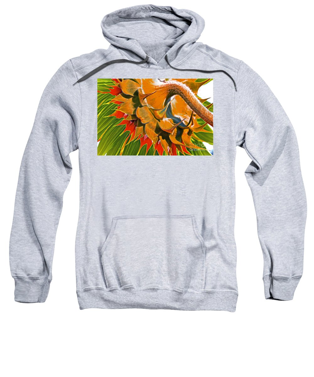 Sunflower Sweatshirt featuring the photograph Temperatures Rising by Gwyn Newcombe