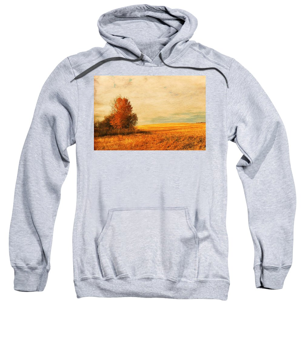 : Jerry Cordeiro Framed Prints Framed Prints Photographs Photographs Photographs Photographs Sweatshirt featuring the photograph The Careful Breeze by The Artist Project
