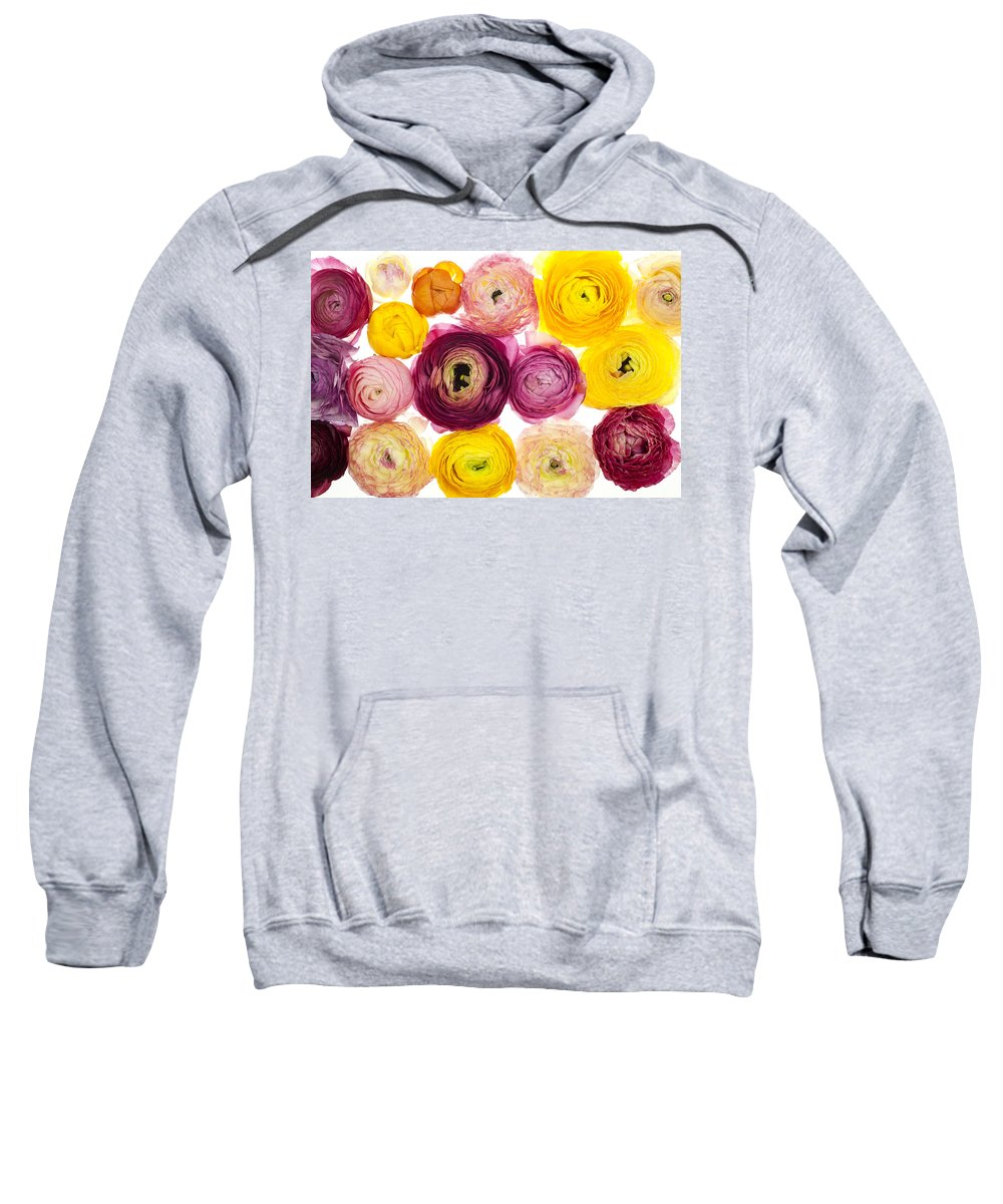 Spring Sweatshirt featuring the photograph The Family Rununculus by Brad Rickerby