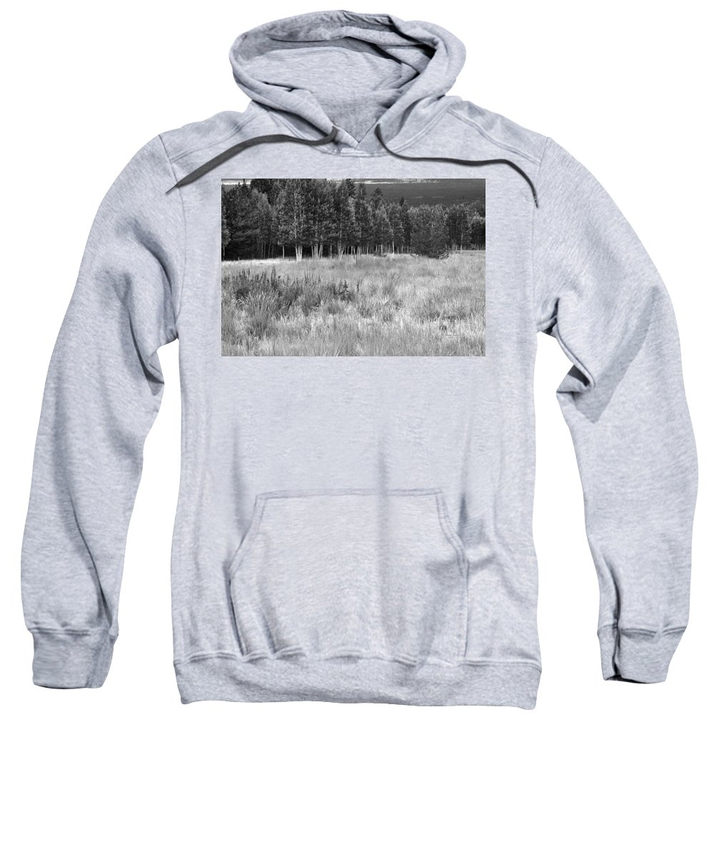 Landscape Sweatshirt featuring the photograph The Meadow Black And White by Phyllis Denton