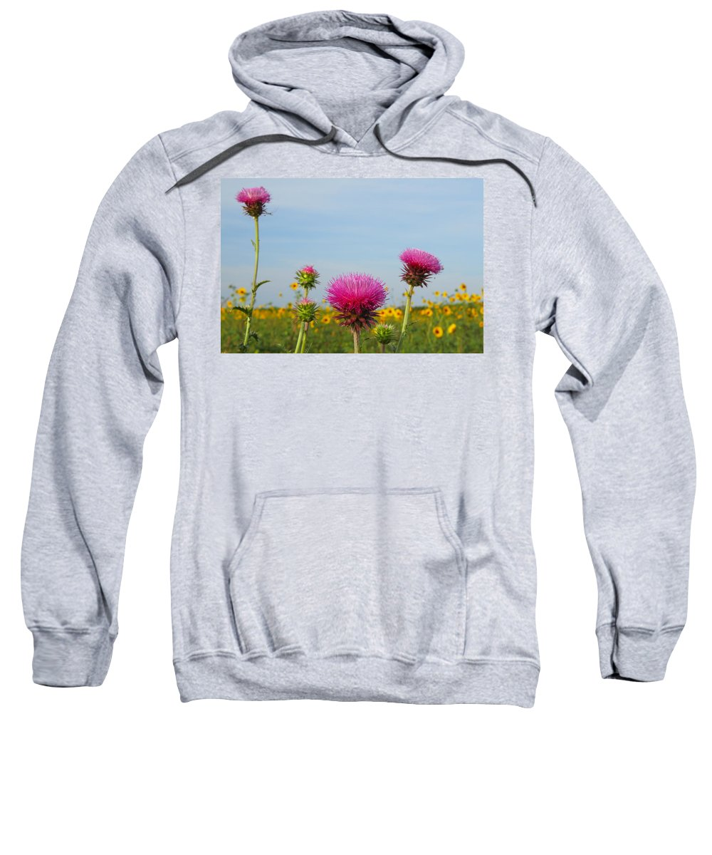 Texas Sweatshirt featuring the photograph Thistle And Sunflower 2am-110468 by Andrew McInnes
