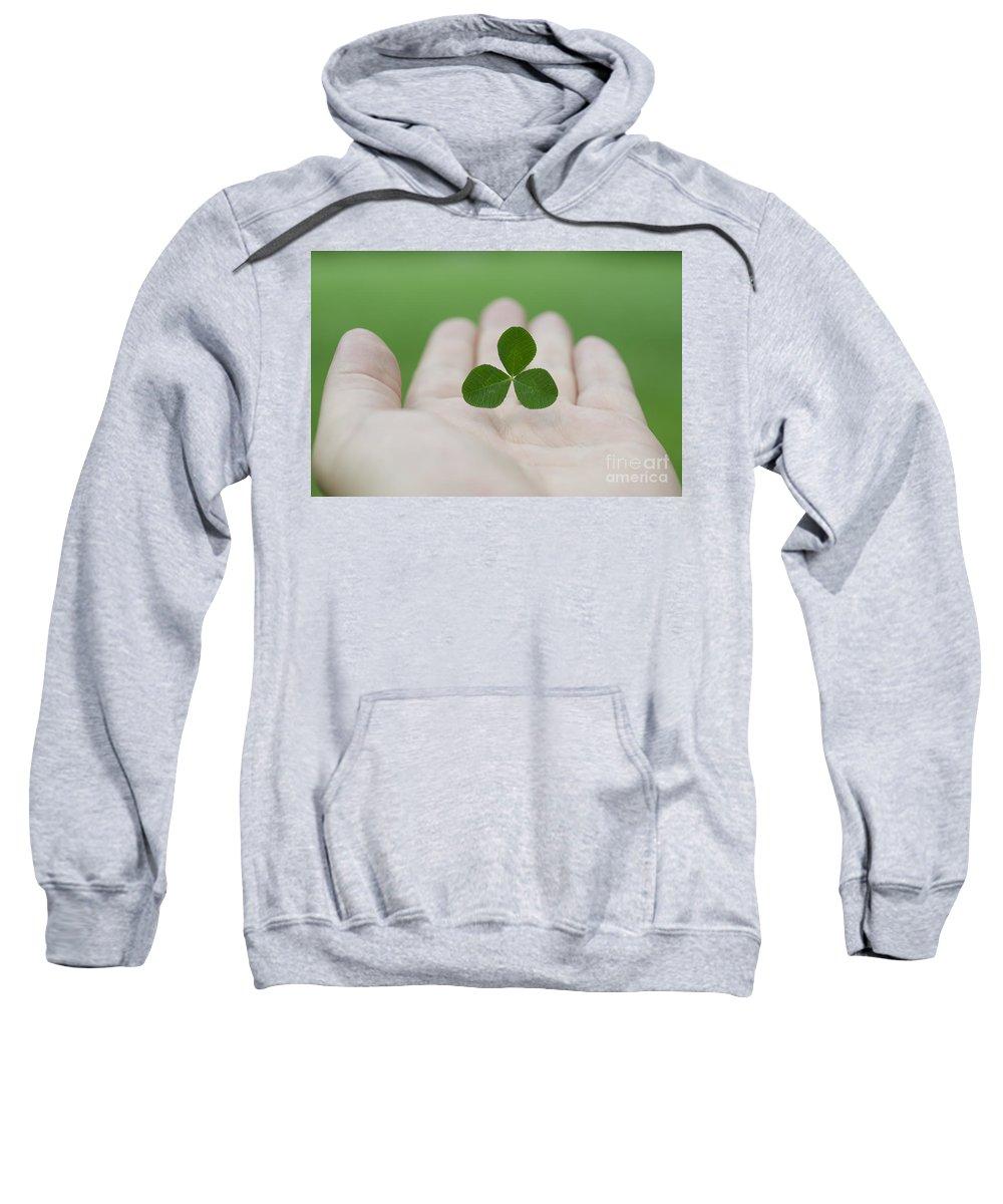 Three Leaf Clover Sweatshirt featuring the photograph Three Leaf Clover by Mats Silvan