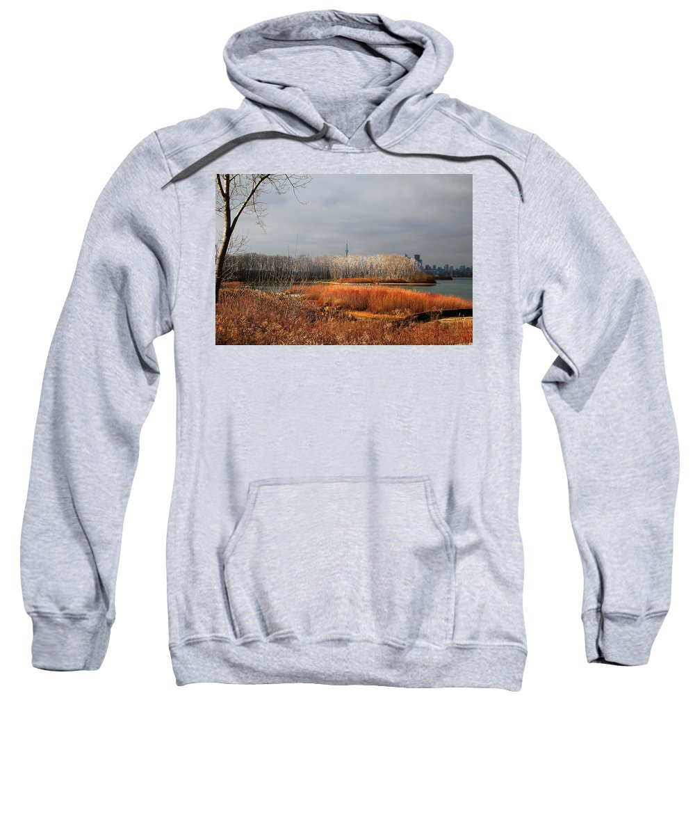 Toronto Skyline Sweatshirt featuring the photograph Toronto Skyline 12 by Andrew Fare