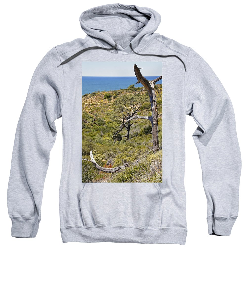 San Diego Sweatshirt featuring the photograph Torry Pines Sentinal by Mick Anderson