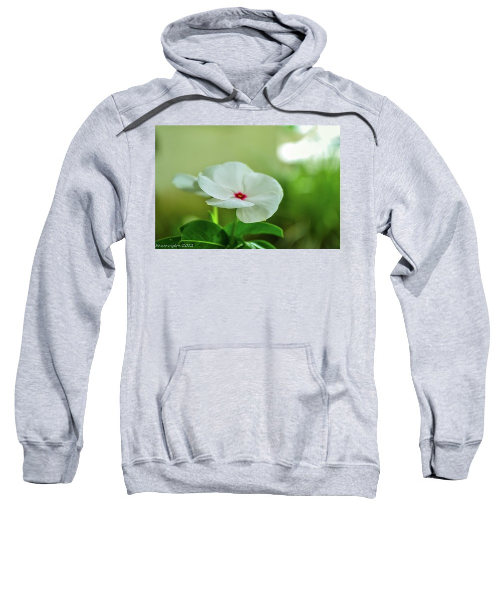 Flowers Sweatshirt featuring the photograph Touch Of Red by Shannon Harrington