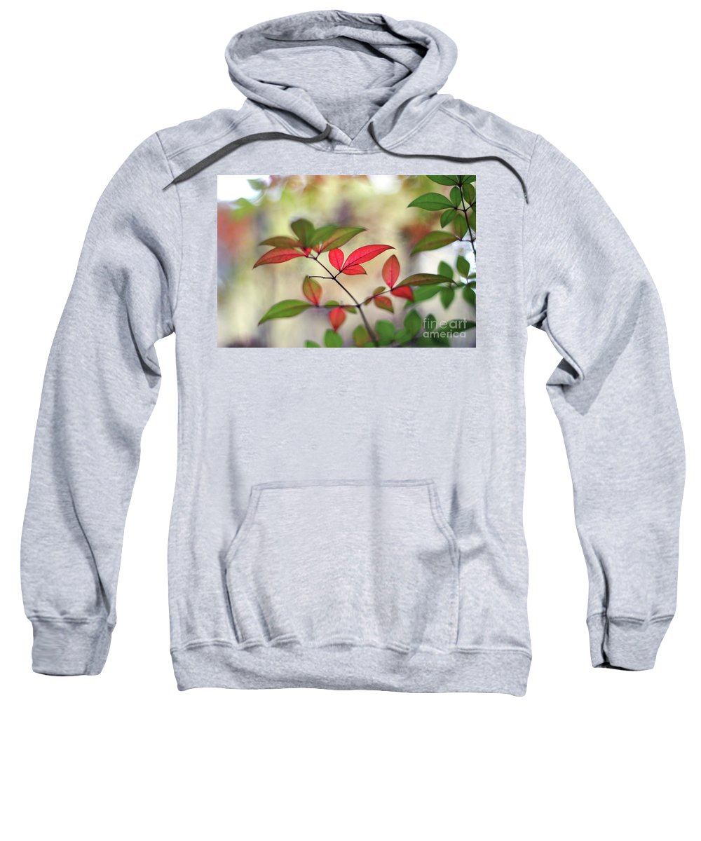 Red Sweatshirt featuring the photograph Tranquiliser by Stephen Mitchell