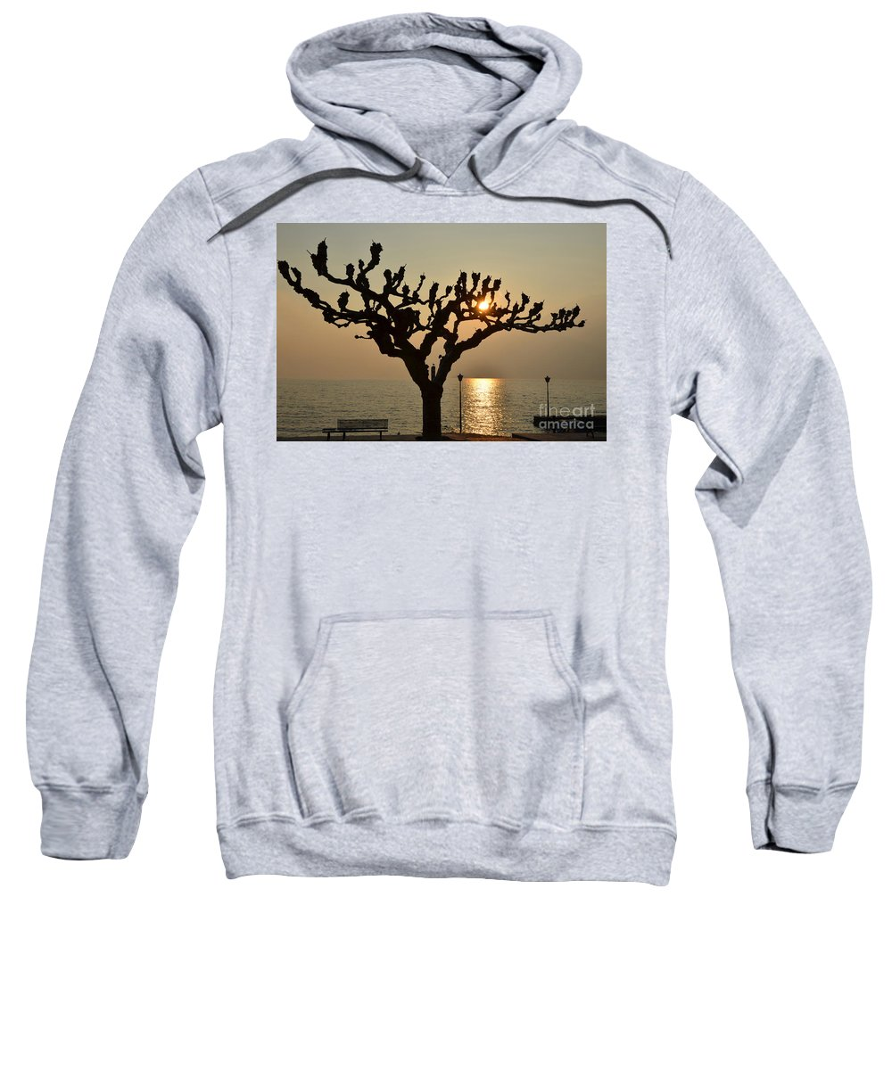 Tree Sweatshirt featuring the photograph Tree In A Foggy Sunset by Mats Silvan