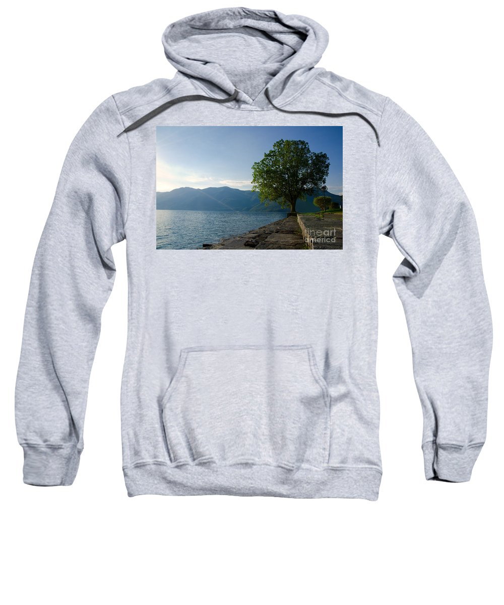 Tree Sweatshirt featuring the photograph Tree On The Lake Front by Mats Silvan
