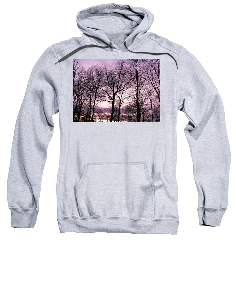 Trees Sweatshirt featuring the photograph Trees In Glorious Calm by Pamela Hyde Wilson