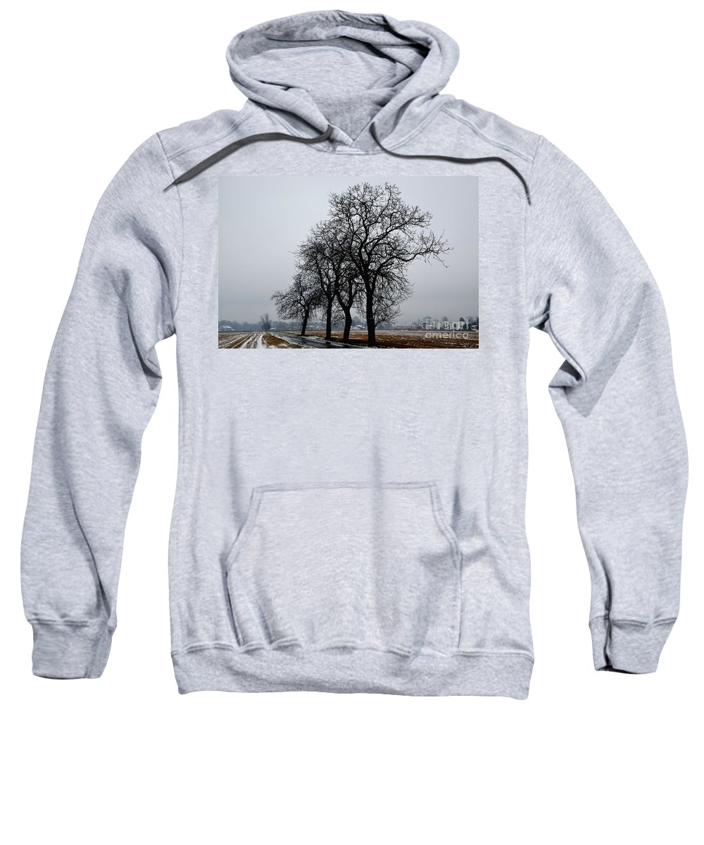 Tree Sweatshirt featuring the photograph Trees In Winter by Mats Silvan